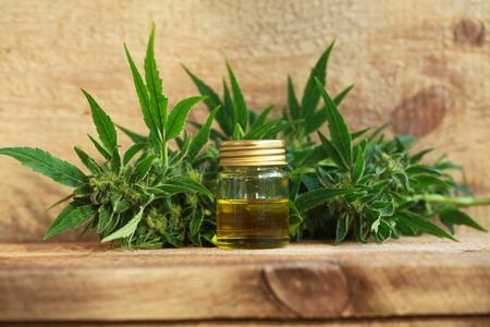 cannabis oil and hemp Banco de Imagens - 86787622