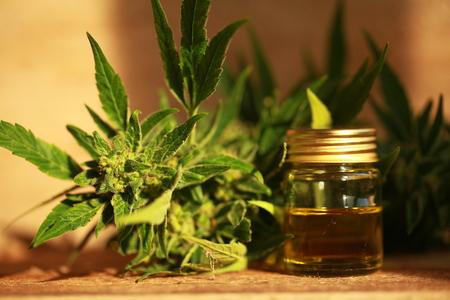 cannabis oil and hemp