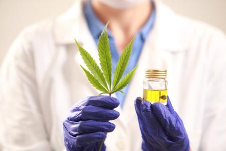 大麻葉と oil.alternative 薬を保持している女性医師