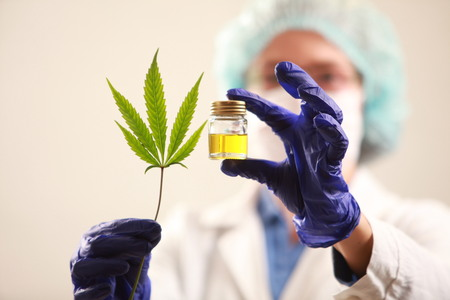 Woman doctor holding a cannabis leaf and oil.alternative medicine Stok Fotoğraf - 88087663