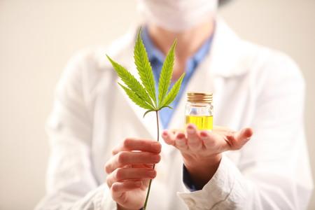 Woman doctor holding a cannabis leaf and oil.alternative medicine Reklamní fotografie - 88555298