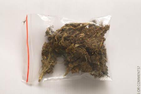 hashish cannabis  hemp Foto de archivo