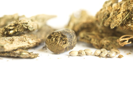 hashish cannabis  hemp Stock Photo
