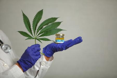 Doctor hand hold medical marijuana and seeds in vitro