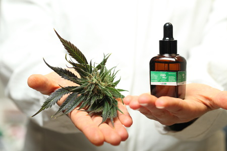 doctor hand hold and offer to patient medical marijuana and oil. Cannabis recipe for personal use, legal light drugs prescribe, alternative remedy or medication,medicine concept