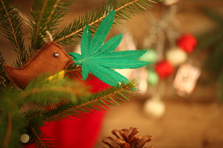 handmade toy on the Christmas tree. cannabis leaf in the bird's beak. Cannabis marijuana new year entertainment