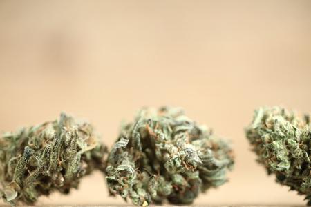 marijuana medical recreation cannabis oil cbd
