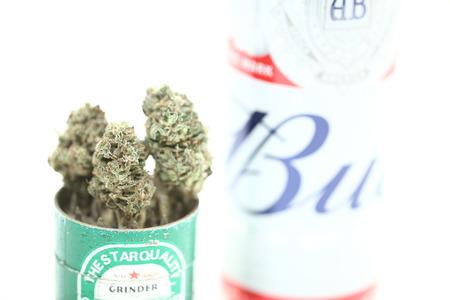 Belarus, Minsk, March ,10 :  Budweiser popular world quality beer and medical cannabis marijuana Editorial
