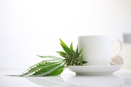 Hemp tea with medical cannabis leaves