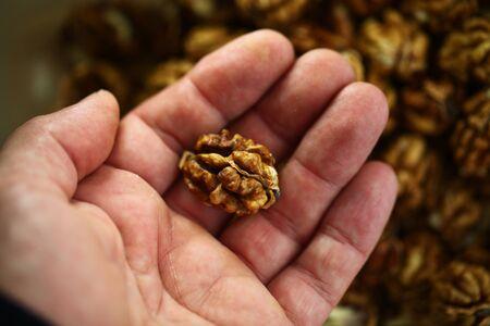 peeled whole kernels of walnuts harvest Reklamní fotografie - 132347855