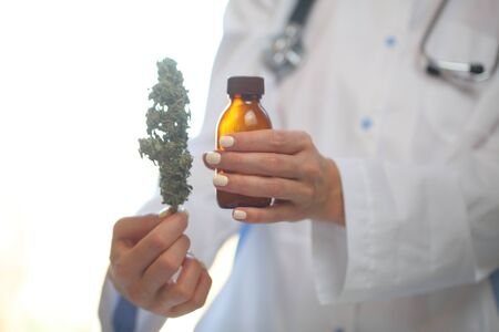 doctor hand hold and offer to patient medical marijuana and oil. Cannabis recipe for personal use, legal light drugs prescribe, alternative remedy or medication,medicine concept Reklamní fotografie - 133601265