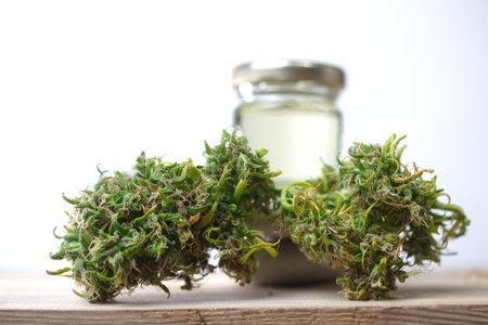 Medical marijuana. cannabis indica. cbd oil. hemp buds