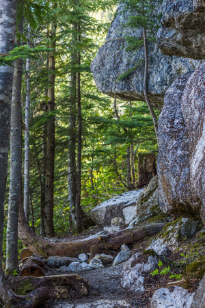 als: Summer mountain hiking landscapes of Provincial Park in British Columbia Canada Als Habrich mountain trail Stock Photo