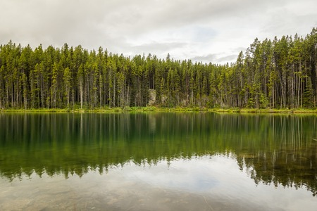icefield: Herbert Lakes with reflection of cloudy sky, woods. Banff National Park, Alberta, Canada. Stock Photo