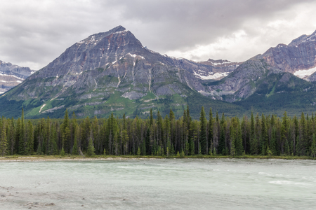 jasper: Jasper National Park Athabaska river in Alberta Canada