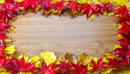 Frame composed of colorful autumn leaves with wood background Stock Photo