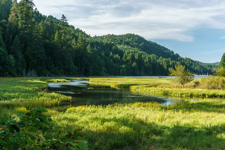 Shallow water in Goldstream Provincial Park with mountains on background and cloudy sky Imagens