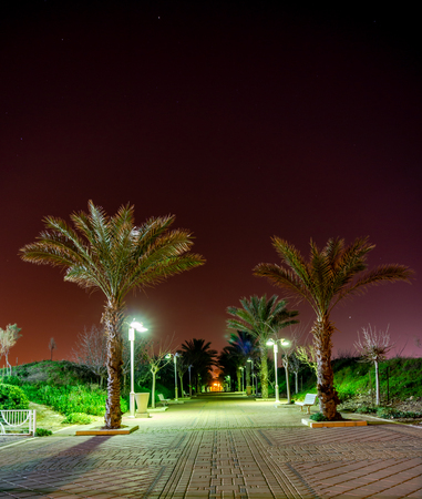 Pedestrian zone with palm trees at night in city of Nahariya, Israel.