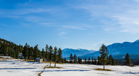 beautiful early spring view of the canadian alpine meadow with blue sky