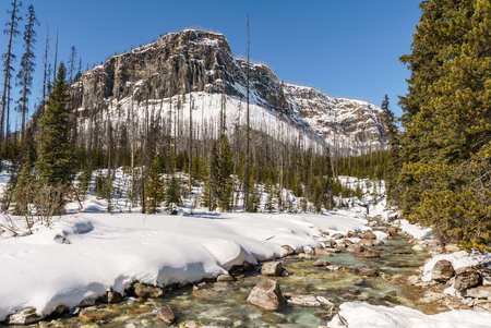 gorgeous wintry scene early spring in Marble Canyon provincial park british columbia canada Stock fotó