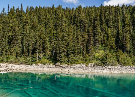 view at Garibaldi lake beautiful sunny morning with forest on mountain