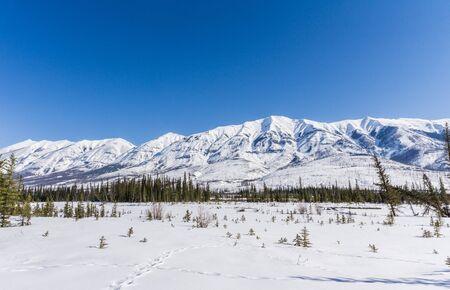 Winter landscape large open space in snow mountain range Alberta Canada Archivio Fotografico