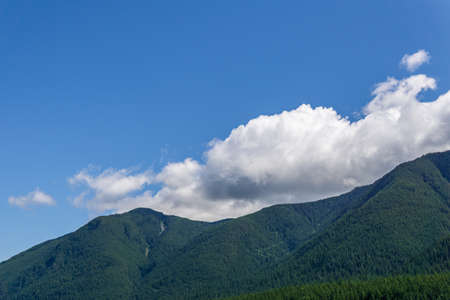 mountains covered with green forest blue sky with white clouds
