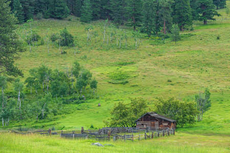 overcast summer day farm in green forest and mountains in British Columbia Canada. 免版税图像