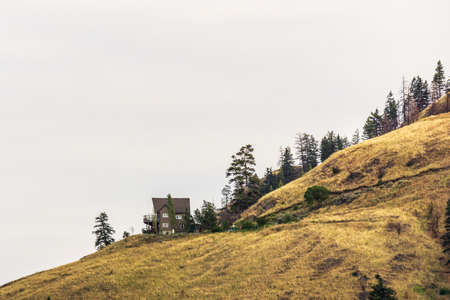overcast summer day green forest and mountains in okanagan valley British Columbia Canada.