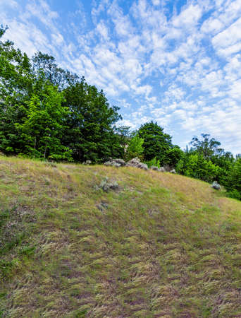 small hill with green bushes and blue sky with white clouds