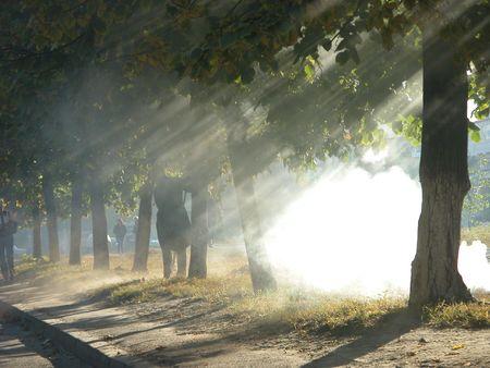 Autunm 公園でたばこを吸う 写真素材