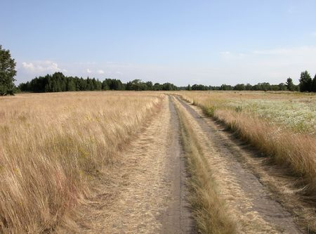 Rural landscape. Road in field. Blue sky. Stock Photo - 836634