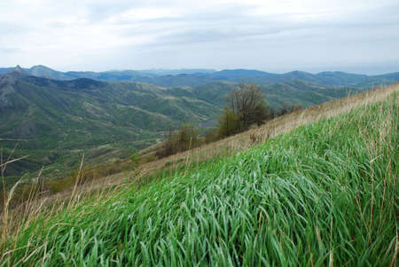Beautiful landscape in green Crimean mountains with hills Stock Photo - 980817