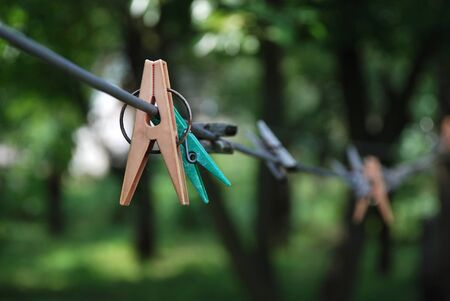 clothespegs: Clothes-pegs on clothes-line on green tree background Stock Photo