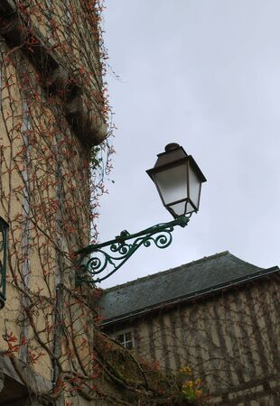 twined: Ornate street lamp and walls twined with delicate foliage of climber, early spring
