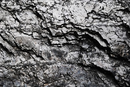 Black shiny coal surface cracked. Mineral geology fuel background. Stock Photo