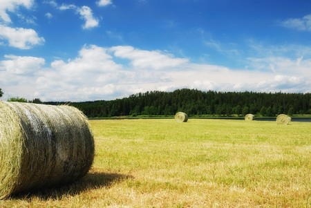 Swedish rural landscape with straw packages on the harvested field. photo