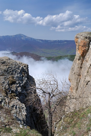 cleft: The Crimean Mountains are photographed from peak of Demirji. The solitary tree is in the cleft between two sheer cliffs. Stock Photo