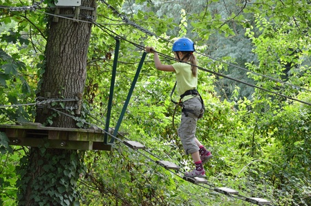Preteen girl is climbing on the rope ladder on the high tree  She is photographed against the green forest