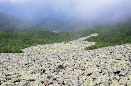 recedes: A large stony scree recedes into the distance on the slope of the mountain covered with evergreen juniper.