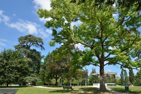 夏公園ボーモントは太陽に照らされた空フランスの都市、ポーです。