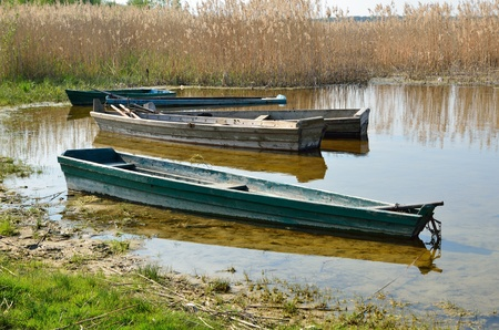 rushy: Several wooden boats are on the rushy shore  Stock Photo
