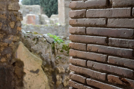 regenerated: Ancient brick wall is recovered in the middle of damaged houses  Pompeii has been a popular tourist destination for over 250 years