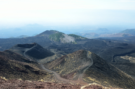 hardened: There are fields of hardened lava and many lateral craters on the slopes of the active volcano Etna.