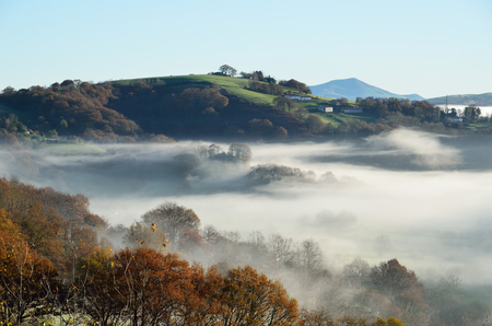 shrouded: A farm with a green pasture is situated on the forested mountain in the Pays Basque. The slopes are shrouded with mist in the winter sunny day.