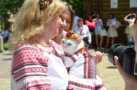 garments: Kyiv Ukraine  May 24 2015: A woman holds the cat in Ukrainian traditional garments at Mega march of embroideries in Kiev.