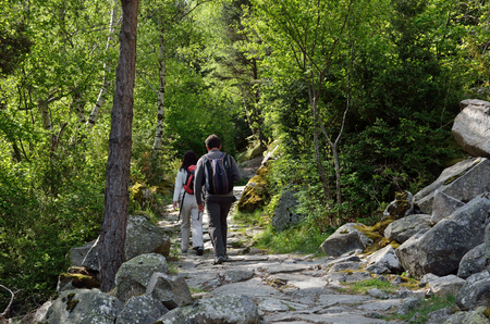 A woman and a man are trekking in the forested mountain. The pathway is paved with various stones.
