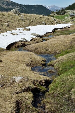 hassock: In the upper part of the ValldeMadriuPerafitaClaror there are the highaltitude valleys with the snowfields glacial streams and wet moorland. Stock Photo