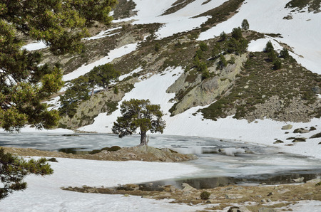 glacial: The upper part of the ValldeMadriuPerafitaClaror is an exposed glacial landscape with tarns and neves.