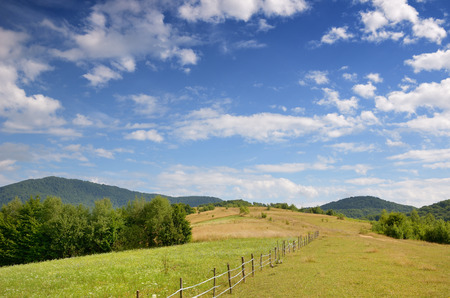 pastureland: Polonyna is a treeless section of the upper zone of the Ukrainian Carpathians which is used as pasture and for hay.